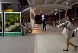 Bangkok BRT