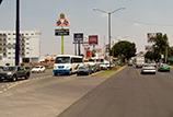 莱昂 BRT